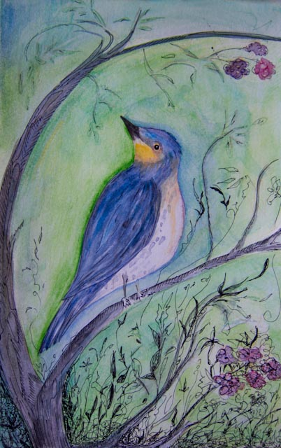 And last but not least a bird painting....
