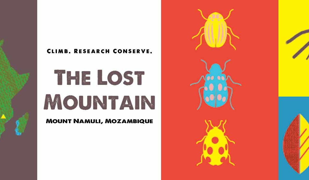 The Lost Mountain Project